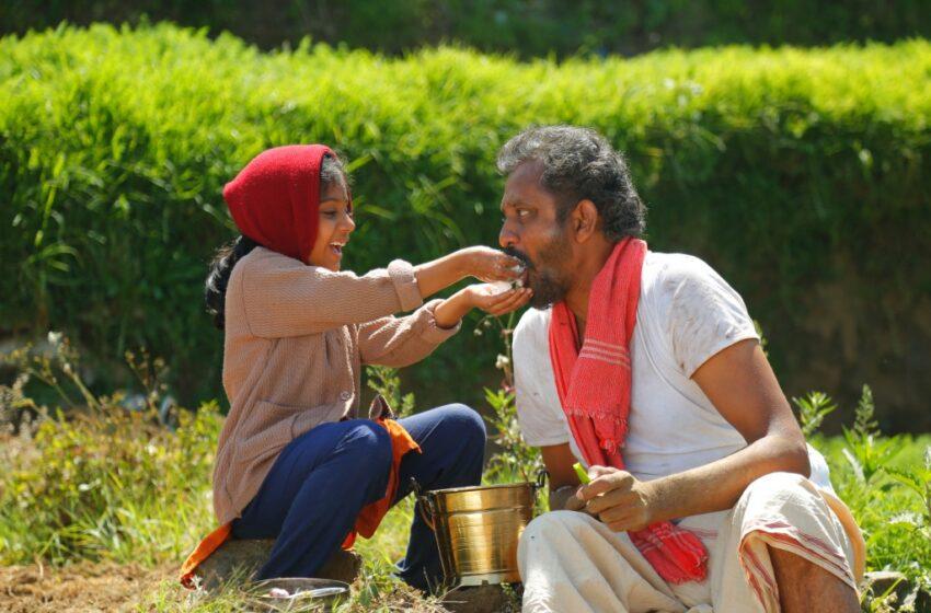 இளையராஜா பாட்டு எழுதி இசையமைத்த 'அக்கா குருவி'. சாமி இயக்கத்தில் உலகத்தரப்படம்
