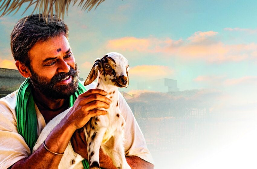 I Am Proud To Share The First Glimpse Of Narappa With You All – Victory Venkatesh